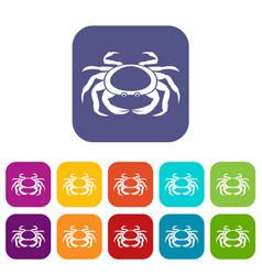 seafood crab icons set flat vector image