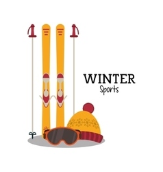 Skis and winter sport design vector image