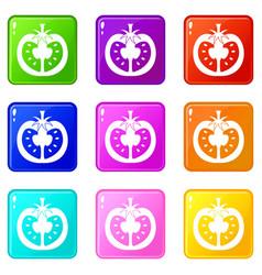 Half of tomato icons 9 set vector