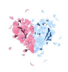 Heart with cherry blossom design vector
