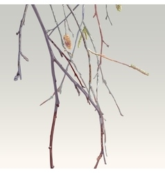 Bare branches of autumn tree vector