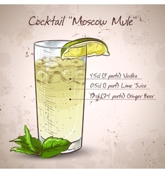 Cocktail moscow mule vector