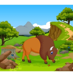 Funny bison cartoon in the jungle vector