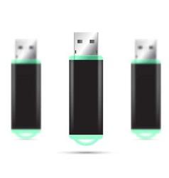 Green usb flash drive isolated set vector