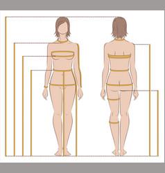 Womens body measurements vector