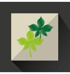 nature leaf green ecology botany vector image
