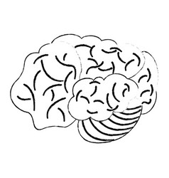 Sketch brain human development idea vector