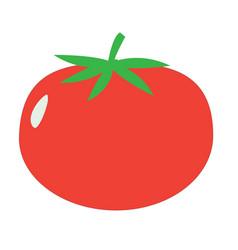 Tomato sign tomato icon on white background flat vector