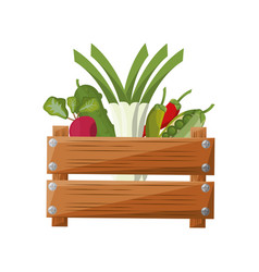 Vegetables wooden box vector