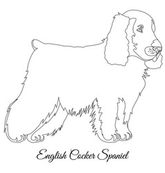 Cocker spaniel dog outline vector