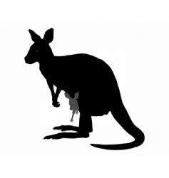 kangaroo with baby vector image vector image