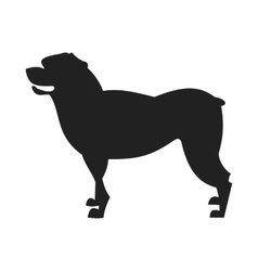 Rottweiler dog black silhouette vector