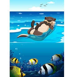 Sea otter swimming in the sea vector