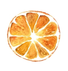 Slice of orange isolated on white background vector image vector image