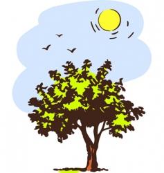 spring tree vector image vector image