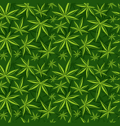 cannabis weed marijuana leaves seamless vector image