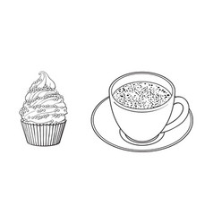 sketch cup of mathca tea cupcake vector image