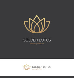 Golden lotus logo vector