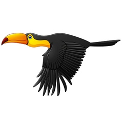 Cute toucan bird cartoon flying vector