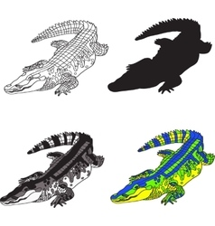 Depicting crocodile made contour vector