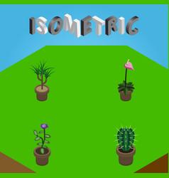 Isometric flower set of flower grower houseplant vector