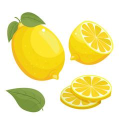 Lemon icon isolated on white vector