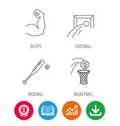 Baseball football and basketball icons vector