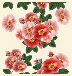 Beautiful pattern with vintage styled rose flowers vector