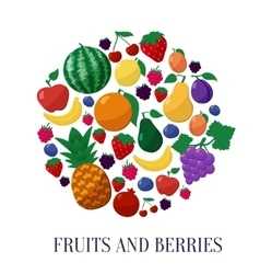 Fruits and Berries Flat Style Icons Set in vector image