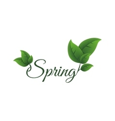 Leaf icon nature and spring design vector
