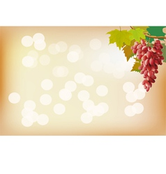 Autumn grapes postcard vector image