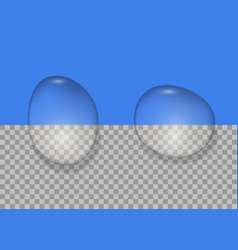 realistic water drops vector image