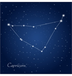 Capricorn constellation vector