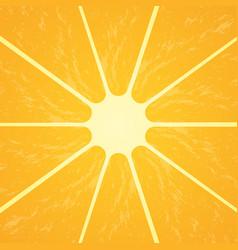 Orange citrus fruit healthy vegan food vector