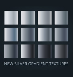 set of 12 different silver gradients isolated on vector image