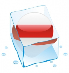 Frozen button flag of belarus vector