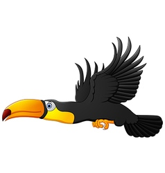 Cute cartoon toucan bird flying vector