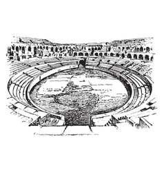 ampitheater of nimes france open-air venue used vector image vector image