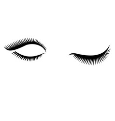 eye lashes icon lashes open and close vector image vector image