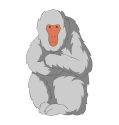 japanese macaque icon cartoon style vector image
