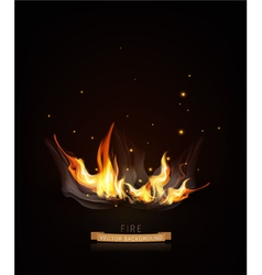 Burning fire on a dark night background vector