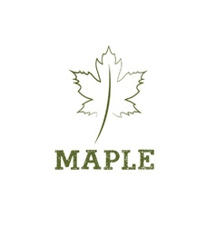 Maple leaf design template vector