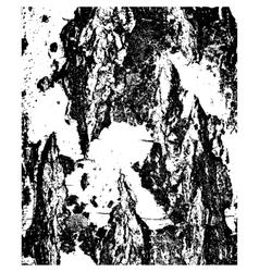 Bark of birch in the cracks texture vector image vector image