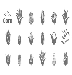 Corn icons vector