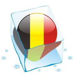 frozen button flag of belgium vector image