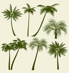 summer holiday palm tree silhouettes vector image