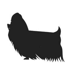 Yorkshire terrier black ssilhouette vector