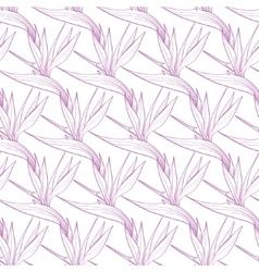 Birds of paradise flowers seamless pattern vector