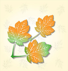 three leaves background vector image vector image