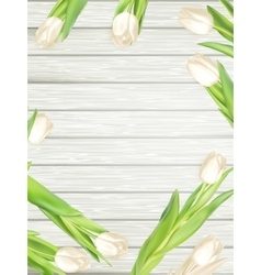 Bouquet of white tulips EPS 10 vector image vector image